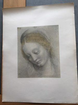 Reproductie Bernardino Luini Head of a Women